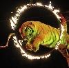 Цирки в Агеево
